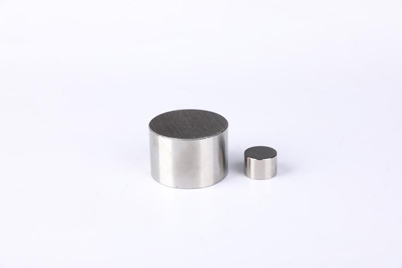 Alnico plug magnet